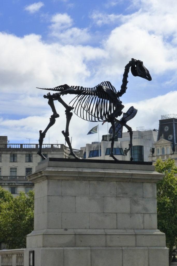 Die vierte Pinthe für wechselnde moderne Kunst: Gegenwärtig ein Pferdegerippe von dem deutschen Künstler Hans Haacke